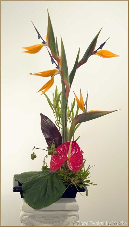 Bird of Paradise Ikebana
