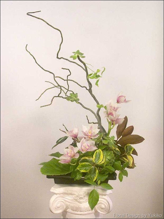 cymbidium-ikebana-branch-DS