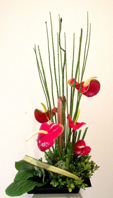 red anthurium ikebana with green harakeke and equisitum (horsetails)
