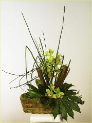 green cymbidium ikebana with equisitum in basket