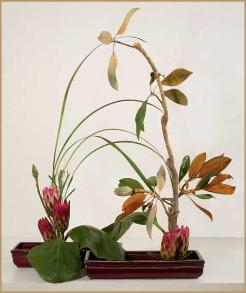 ikebana in 2 containers magnolia