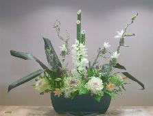 Kadomatsu New Year ikebana ornamental cabbage