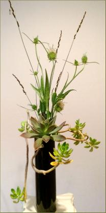 Succulent Ikebana in unique vertical holder, design by Yukiko
