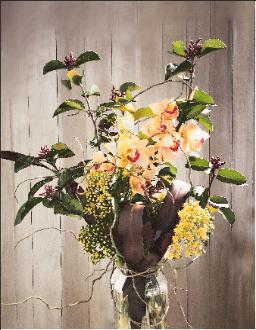 flower celebration orchid curly willow seasonal branches
