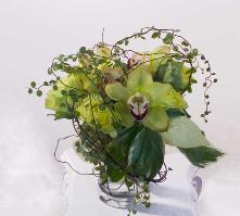 cymbidium arrangement, delivered to Ross.